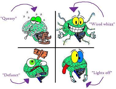 Brain matrix in the brain audit